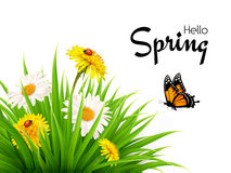 Nature spring background with grass, flowers and butterflies. Vector stock illustration
