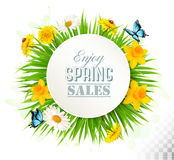 Nature spring background with narcissus, daisies and butterflies Royalty Free Stock Photo