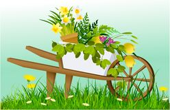 Nature spring background with wheelbarrow and garden plants Stock Photography