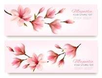 Nature spring banners with beautiful magnolia branches. Vector Royalty Free Stock Photo
