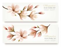 Nature spring banners with beautiful magnolia branches. Vector Stock Image