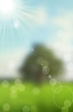 Nature spring bokeh background Royalty Free Stock Photo