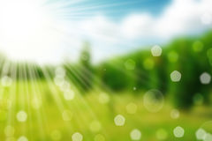 Nature spring bokeh background Royalty Free Stock Image