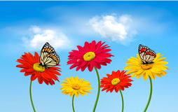 Nature spring gerber flowers with butterflies vector illustration