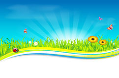 Nature spring/summer background Stock Photography