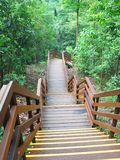 Nature Stairs. Walkway at Nature Park stock images