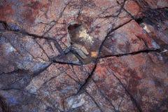 Nature stone Stock Photography