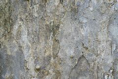 Nature stone texture for backgrounds image photo Royalty Free Stock Image