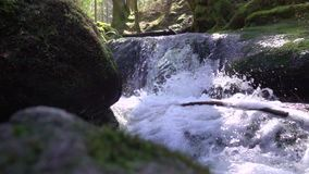Nature stream runs over stones covered with green moss and lot of splashes fresh and pure water flow in Slow motion. Close-up stock video