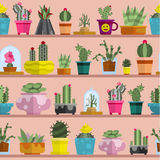 Nature succulent home cactus tropical plant vector illustration seamless pattern Royalty Free Stock Photography