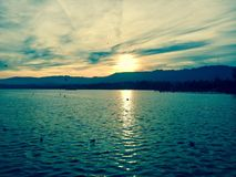 Nature suisse Sun de lac zurich Photographie stock
