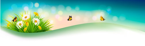 Nature summer background with grass, flowers and butterflies. Vector Stock Images