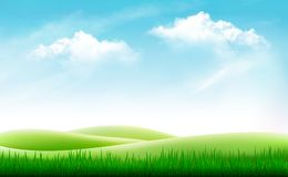 Nature summer background with green grass and blue sky. Vector Stock Photos