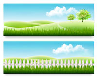 Nature summer banners with green grass and blue sky. Stock Images