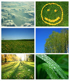Nature and summer collage Royalty Free Stock Image