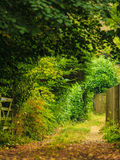 Nature summer landscape. Countryside view and rustic gate Royalty Free Stock Photos