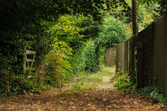 Nature summer landscape. Countryside view and rustic gate Royalty Free Stock Photography