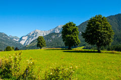 Nature. Summer mountains green grass and blue sky landscape Royalty Free Stock Photography