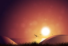 Nature Sunrise. Morning nature sunrise background with blurry lights and birds flying over ocean Stock Photography