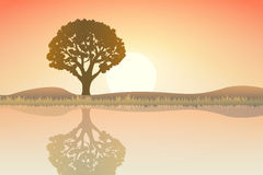 Nature at sunset. Outdoor design concept. Beautiful landscape. F Stock Photo
