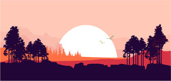 Nature at sunset. Vector illustration of a fictional landscape of a wildlife sunset in a mountain forest Stock Photos