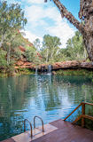 Nature swimming pool Stock Photo
