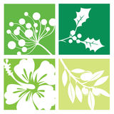 Nature symbols, flowers. Logos of flowers, leaves cut out  on white Stock Photo