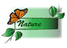Nature. Tag with a butterfly and twigs Stock Image