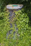 Nature taking over. Old garbage can covered with green foliage Royalty Free Stock Image