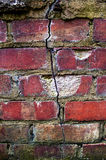 Nature taking over, crack in brick foundation Stock Photos