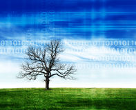 Nature and technology Royalty Free Stock Photos