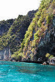 Nature Thailand. Nature of tropical sunny Thailand Stock Photo
