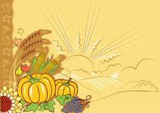 Nature thanksgiving decoration Stock Photography