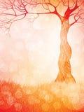 Nature theme background Stock Photo