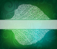 Nature theme banner Stock Photo