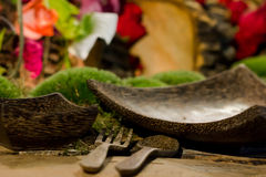 Nature themed dining setting Royalty Free Stock Image
