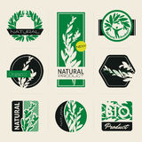 Nature-themed labels and banners with leaves. Nature-themed labels, banners and badges with green leaves. Vector design elements Stock Photography