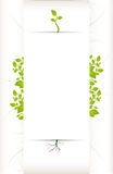 Nature-Themed Text Space. For letters or posters Stock Photography