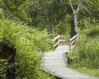 Nature Trail. A nature trail in a local park Royalty Free Stock Photos
