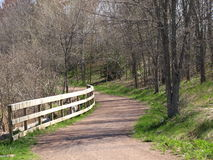 Nature trail. A nature trail that leads into the forest stock photo