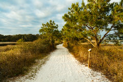 Nature Trail. Beautiful nature trail along Philips Inlet in the North Florida panhandle area near Panama City Stock Photos