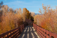 Free Nature Trail Bridge On Sunny Day Royalty Free Stock Image - 47526626