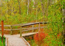 Nature Trail Crossroad Royalty Free Stock Image
