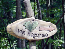Nature trail indicator. Wooden sign in the Latin  language indicating the start of a nature trail through the forest Royalty Free Stock Image