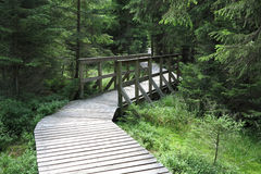 The nature trail in a nature reserve Kladska Stock Image