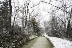 Nature Trail in Ohio. With Trees and Snow royalty free stock photography