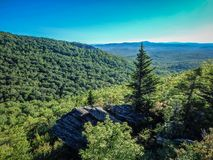 Nature trail scenes to calloway peak north carolina Royalty Free Stock Photography