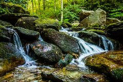 Nature trail scenes to calloway peak north carolina Royalty Free Stock Photos