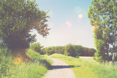 Nature trail in a summer landscape Royalty Free Stock Images
