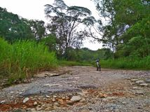 Rough track. Nature trail in Tengah forest is paved with rocks, cobblestone and gravel Royalty Free Stock Image